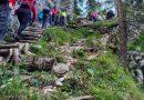 Planinski pohod na Cojzovo kočo na Kokrškem sedlu in na Mlinarsko sedlo